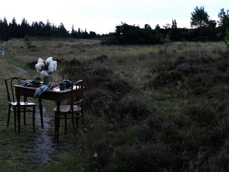 Tea on the moor