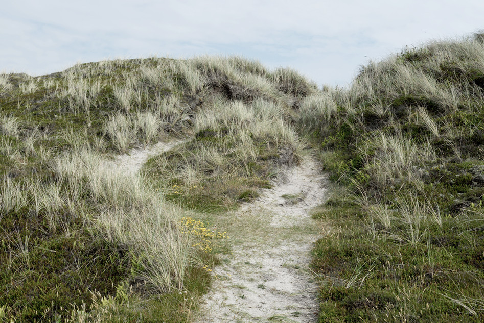 Danish west coast