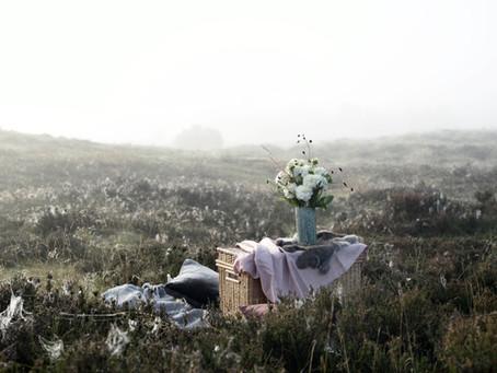 Mist on the moor