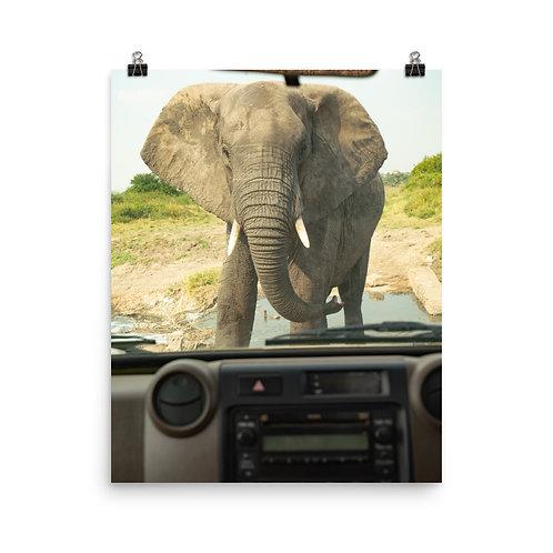 Poster - African Road Block