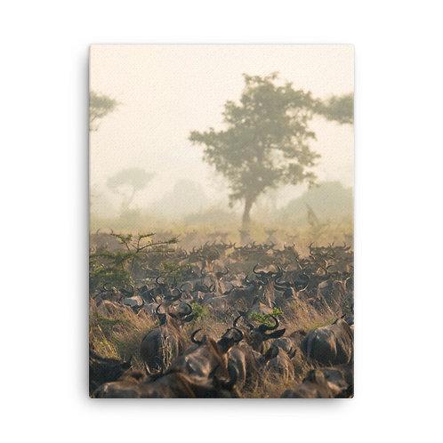 Canvas - Serengeti Traffic Jam