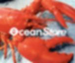 OceanStore