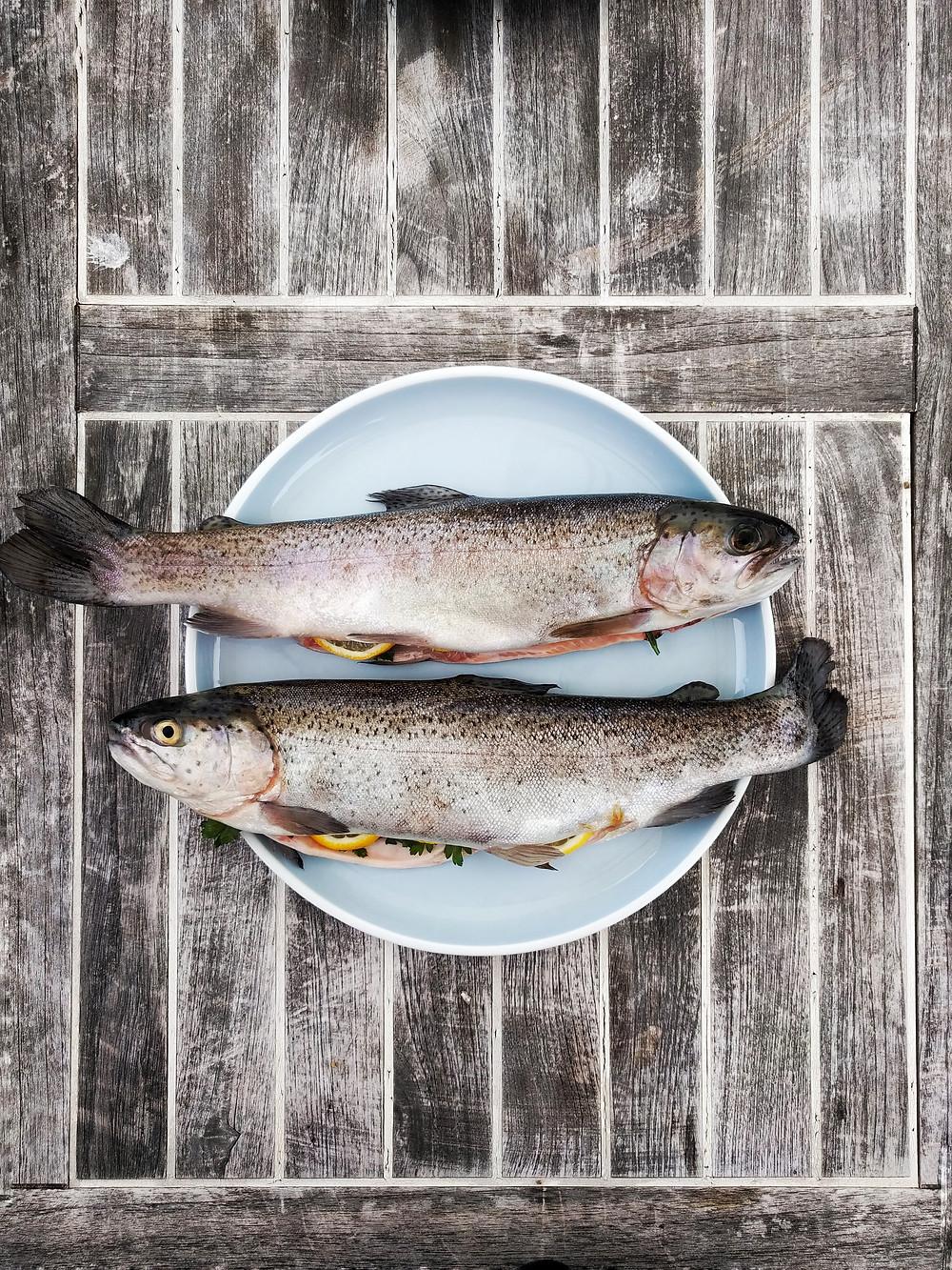 Hoe herken je een verse vis?