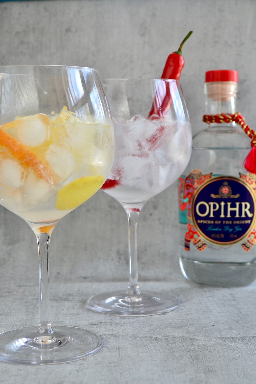 Ophir Gin-Tonic