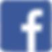 Facebook-Logo-500x500.png