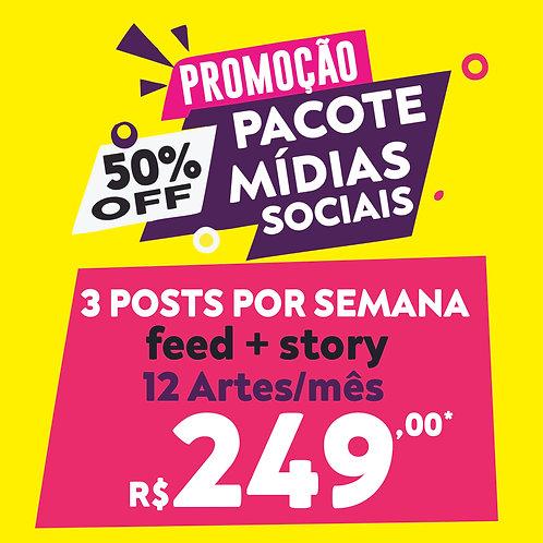 12 POSTS/ARTES MENSAIS - Pacote de Mídias Sociais