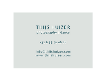 thijshuizer logo-05.png