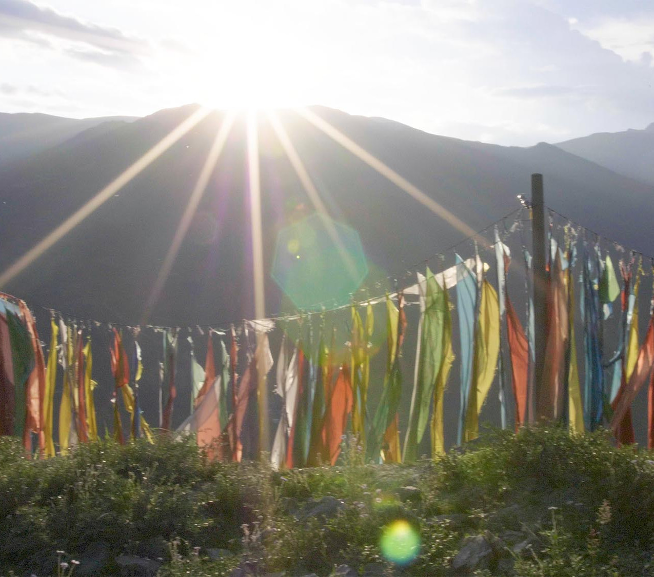 Prayer flags off the side of a mountain biking trail.
