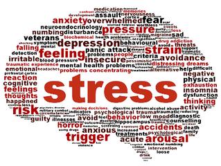 Het leven en stress