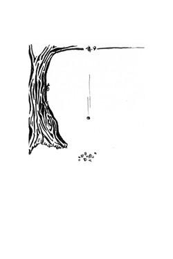 1210]illustratie]date de han]hanneke last]