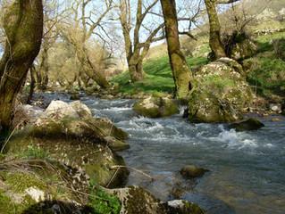 Il fiume dell'oblio ed altre storie