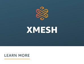 06_Xmesh.jpg