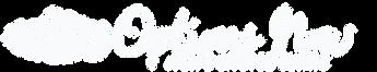 ON-logo-long-white.png