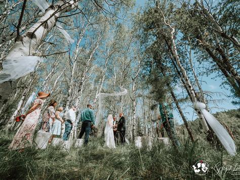 Married Among The Aspen Grove