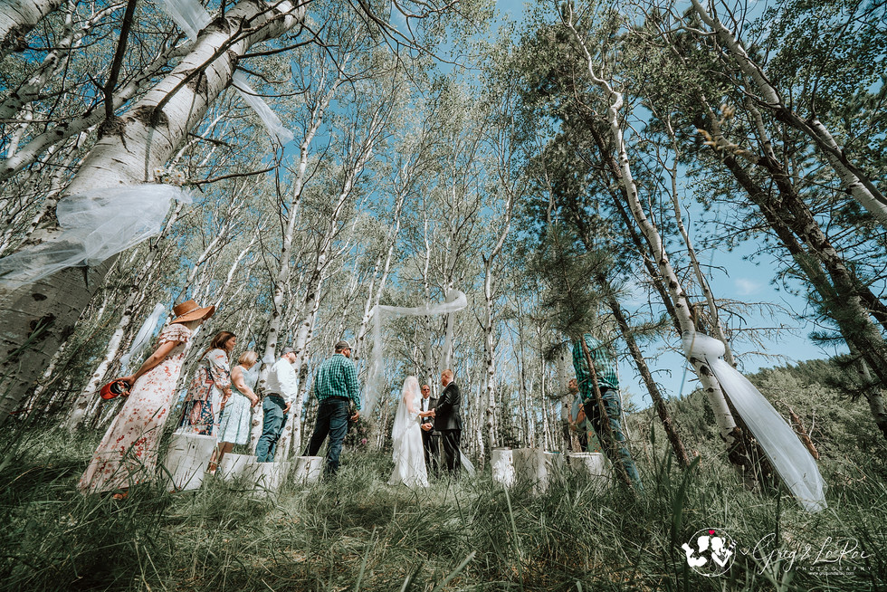 Married Among The Aspen Grove