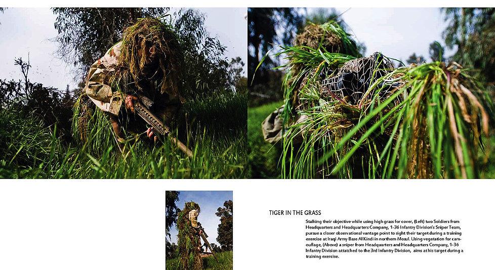 YANK+4_Page_18+tiger+inthe+grass.jpg