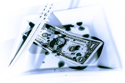 Dollar Bill2 (2 of 2).jpg