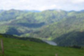 omslagfoto trail.jpg