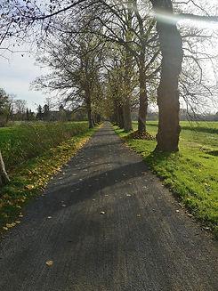 DE24 road.jpg