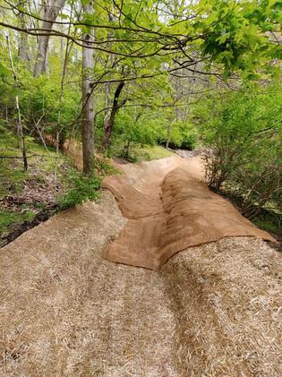 Erosion Control Installed