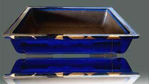 l'art d'embellir un pot à bonsaï bleue rectangulaire avec le kintsugi
