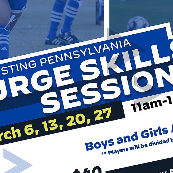Sting PA Surge Skills Sessions