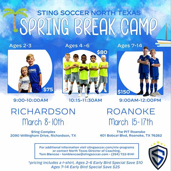 Spring Break Camp - Roanoke