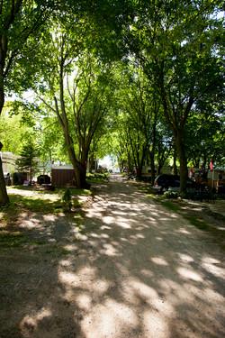 Olympia Village Road 2