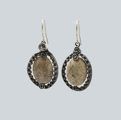 Fossilized Coral in Wire Weave frames