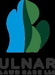 Ulnar_LLC Trans.png