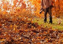 man-blowing-leaves.jpg