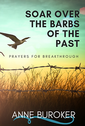 Soar Over the Barbs of the Past - CD & DVD