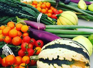 Provided Fresh Produce