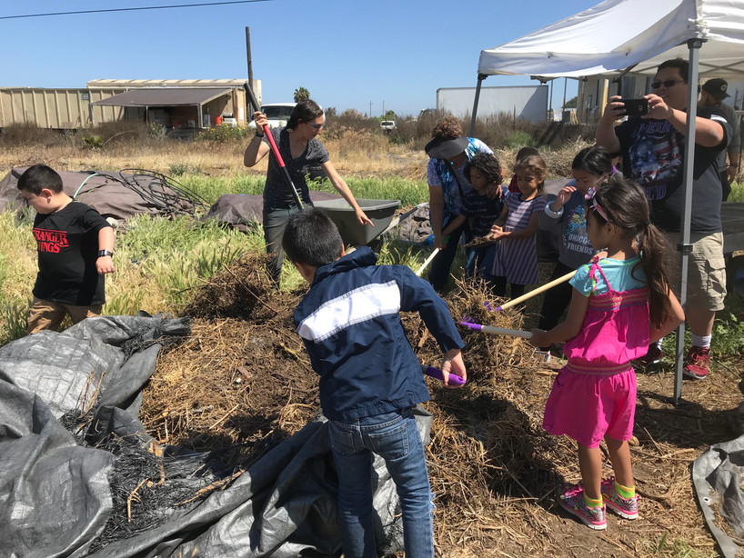 Learn about composting