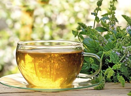 Recipes: Tea, Quinoa Salad, & Zucchini Lasagna Recipe