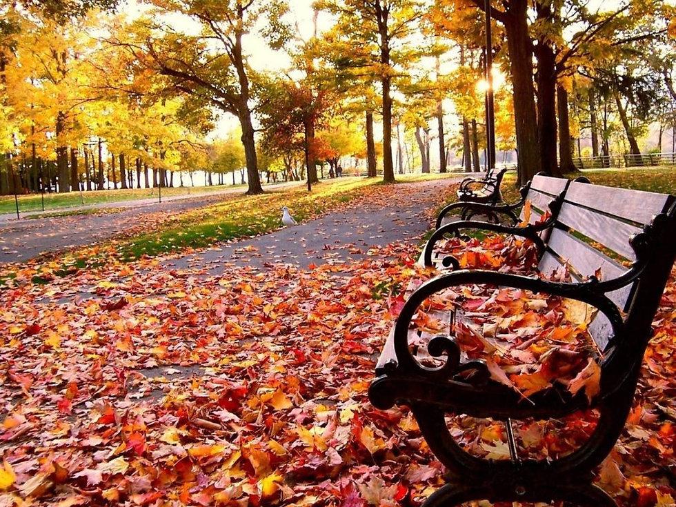 first day of Fall in Waco.jpg