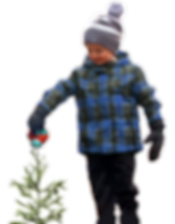 Buy1Plant1 Will watering tree PNG_edited