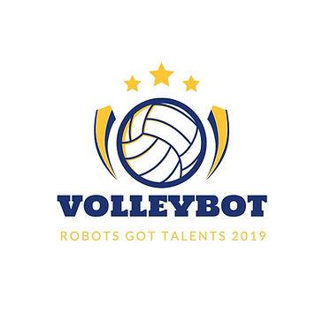 VolleyBotCourseLogo.jpg