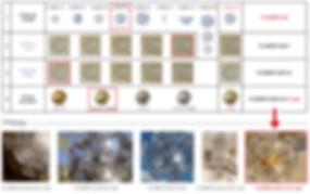 FLOWER_CZ_WEB_2.jpg