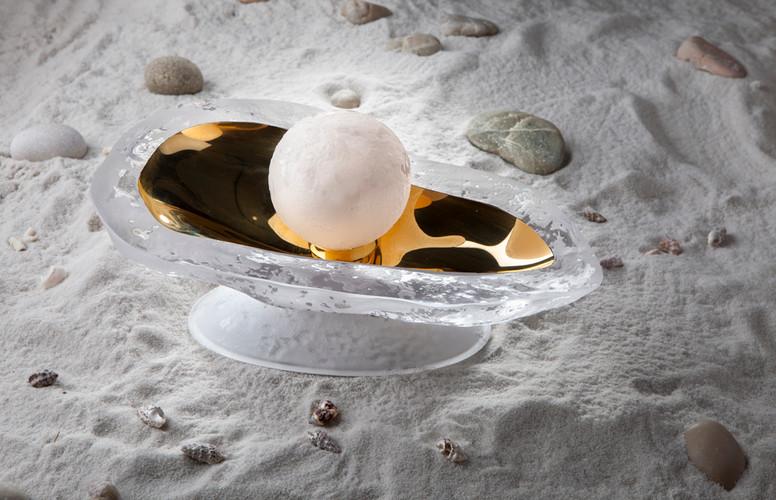 Seashell 4