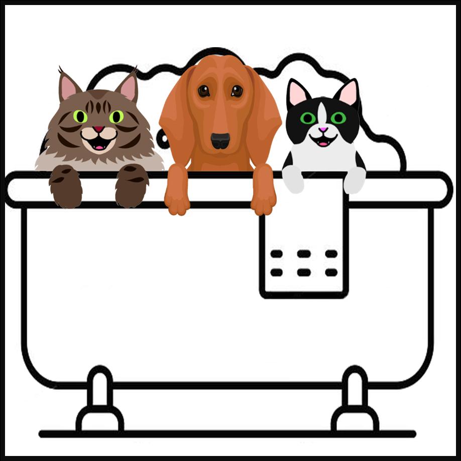 Small Pet Wash