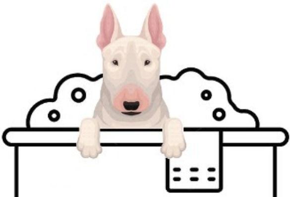 Medium Pet Wash