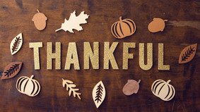 Gratitude and the Brain