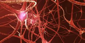 Neuroplasticity: The Self-Healing Brain