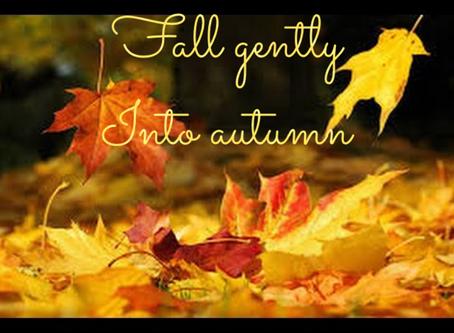 Fall gently into autumn