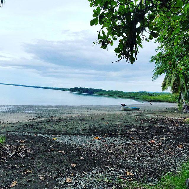 The Pura Vida Retreat _Osa Peninsula, Costa Rica _December 26th to January 3rd__Travel to one of the