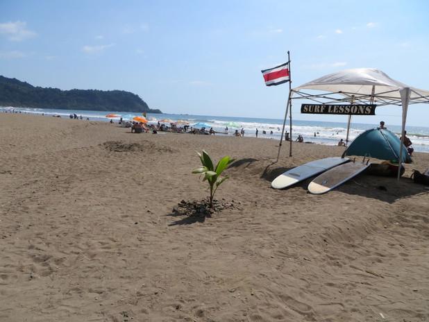 va beach image.jpeg