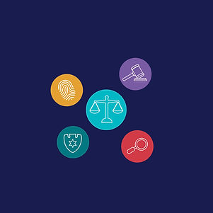 enforcement icons square.jpg
