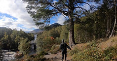 A person walking away from the viewer in a wooded landscape with river