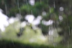 pluie intérieure
